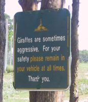 the giraffe sign by lovebam