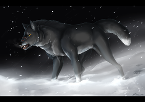 Bracing the Blizzard by Susiron
