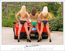 The little red corvette 4 by Otd