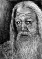 HP: Dumbledore by freshberries