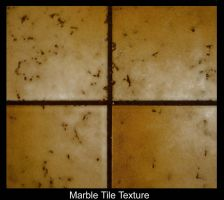 Marble Tile by Polly-Stock