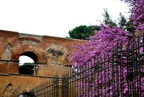 Life Around the Old Aqueduct by TimesReaper