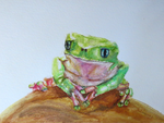 Waxy Monkey Frog Watercolor Painting by Redeyedmoon