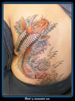 Koi Color Second Sitting by ritch-g