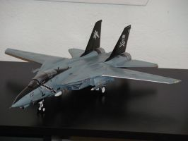 The People's F-14 by BlueFox284