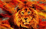 KING OF THE JUNGLE by CSuk-1T