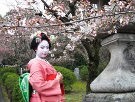 Maiko (Pink) - 5 by rin-no-michiei
