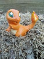 a wild charmander has appeared! by HunterHeroici