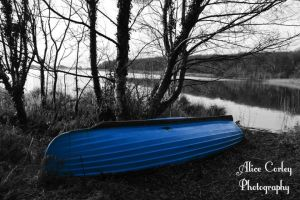 Boat by alicecorley