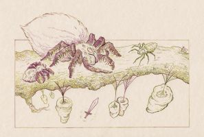 The Hobbit - Flies and spiders by Riana-art
