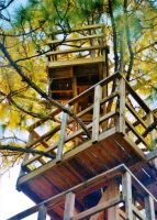 Our Treehouse Built by My Husband {Photo 5} by Empress-XZarrethTKon