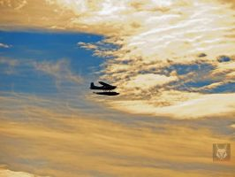 Sea Plane Across Sunset by wolfwings1