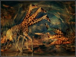 giraffe thought .... by fisher57