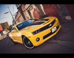American Muscle by Numizmat