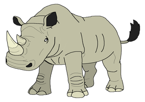 White Rhinoceros by kylgrv