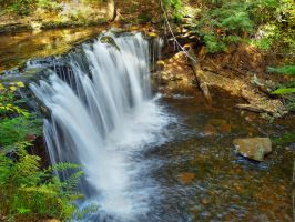 Ricketts Glen State Park 94 by Dracoart-Stock