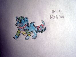 Contest Entry North Star by larrykoopa13 by Vyel