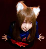 Spice and Wolf I by kaworu0926