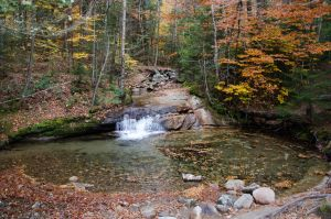 White Mountains  Fall Foliage  262 by FairieGoodMother