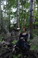 Forest Witchcraft 6 by Anariel-Stock