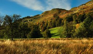 Yellowcraig, Stirling by younghappy