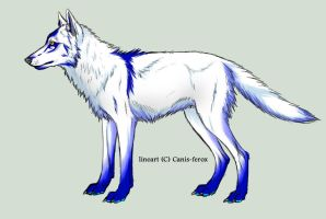Wolf-Color-concept-1 by blckxwngxdragon