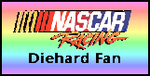 Nascar Fan - 24 by Sterlingware