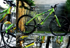 cannondale by dkpd