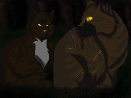 Hawkfrost and Tigerstar by AcaziaLioness94
