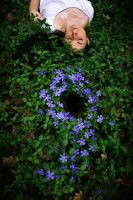 Tribute to Andy Goldsworthy by V-a-r-d-a