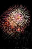 New Years Fireworks 1 by AquarianPhotography