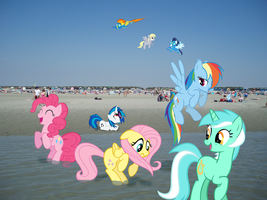 Ponies at the beach by Zoiby