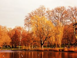 London Hyde Park by GraceDoragon