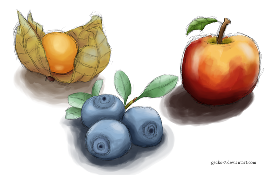 Fruit Studies by Gecko-7