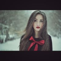 Red bow by AnitaAnti