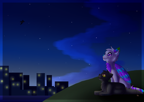 So I'll watch the summer stars by Icepath39