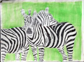 zebras color by charlieest