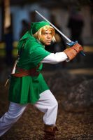 Link In Action by R-Legend