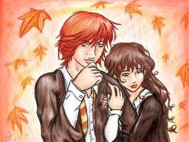 Ron and Hermione by seasaidh