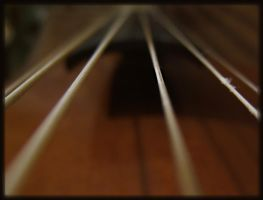 Viol strings. Focusing by mirator