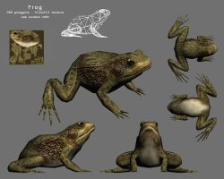 Monsieur Frog by JLeichliter