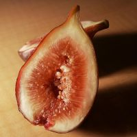 Fig by TheNakedSneff