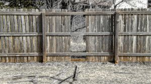 hOle iN tHe feNce by mudyfrog