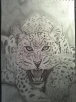 leopard finished by tonez2