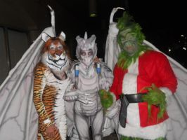 The Grinch, a tiger, and a dragon by invaderjade1
