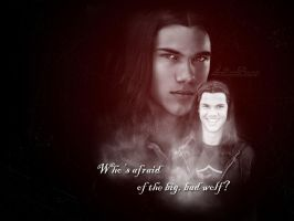 Jacob Black Wallpaper by LaDamePerverse
