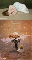 Before and After-Thumbelina by areemus