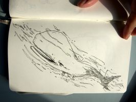 Moby Dick Sketch by Studion8