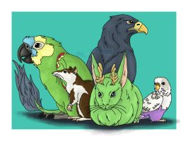 Birds, The Rat, And The Bunny by WhitePhoenix7