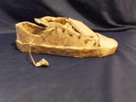 Cardboard Shoe by StillWaving